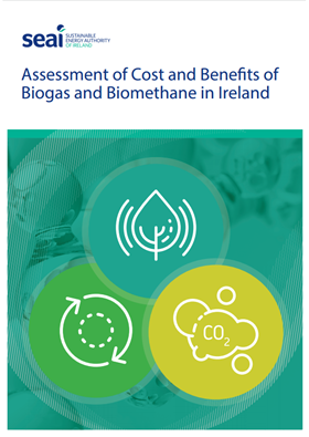 Assessment of cost and benefits of biogas and biomethane in Ireland