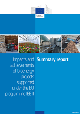 Impacts and achievements of bioenergy projects supported under the EU programme IEE II